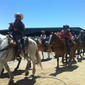 25th Annual Reno Rodeo Cattle Drive