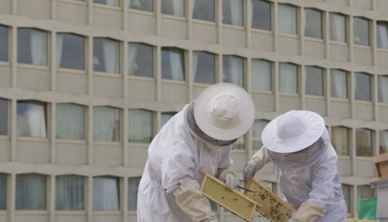 The Lancaster London Hotel Is A Honey Of A Hotel