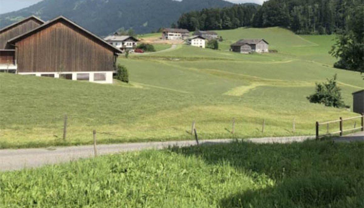 austrian-scene