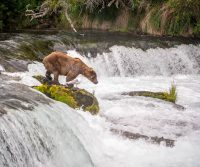 Gary Arndt Describes The National Park Wonders Of Alaska