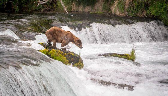Alaska National Parks