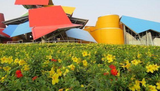 Panama Biomuseo