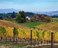 Farm-to-Table Dining, and Soft Adventure in Oregon's Tualatin Valley